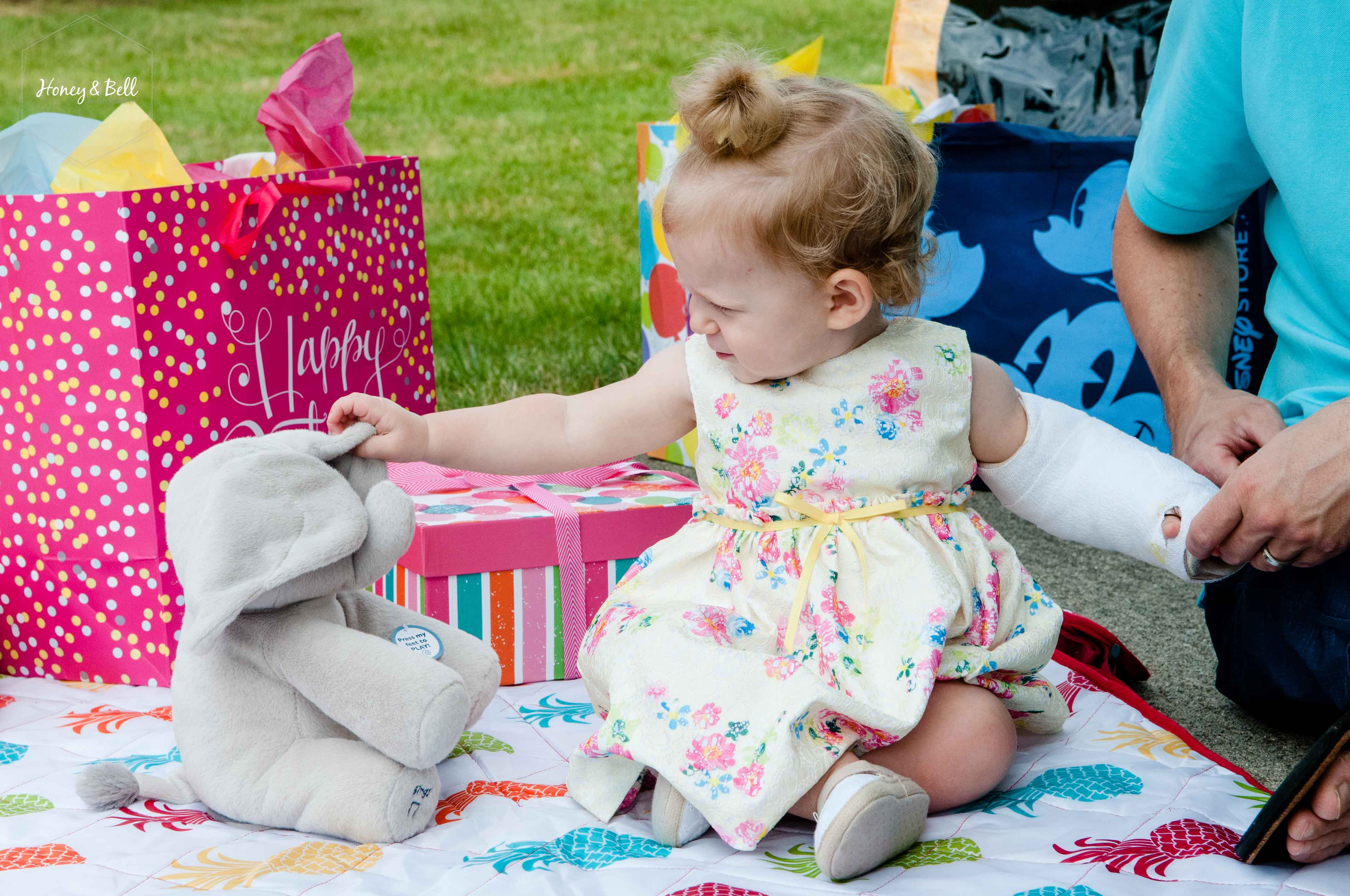 elyse-first-birthday-clarkston-michigan-family-photographer-parks08